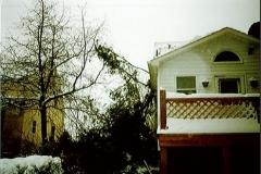 Tree into Residence